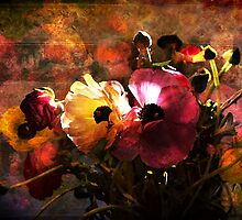 Ranunculi by Heather Prince