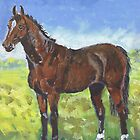 Australian Stockhorse  by Diana-Lee Saville