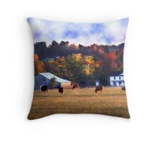 """Old Abandoned  Home Place"" Throw Pillow"
