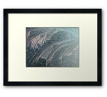Iceflowers Framed Print
