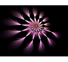 Flower - Abstract Fractal Artwork Photographic Print