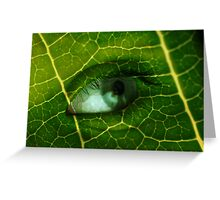 Natures Alive Greeting Card