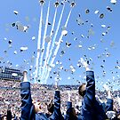 Hat Toss by Beverly Lussier