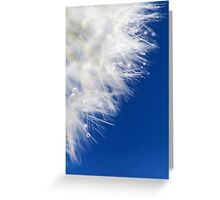 White pearls Greeting Card