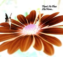There's No Place Like Home... Welcome Home Card by Vanessa Barklay