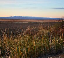 The Steens mountains by Daphene