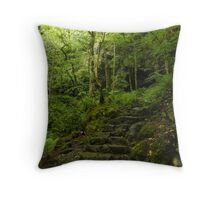 stone steps path through the woods Throw Pillow