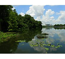 Lake Views From The Gardens ~ Part Three Photographic Print