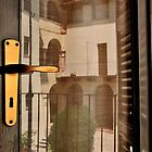 Reflections on Door by MaluC