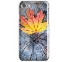 Maple Leaf in Autumn iPhone Case/Skin