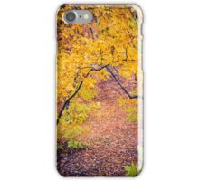 Warm Autumn Forest iPhone Case/Skin