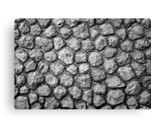 grey stone wall dragon skin Canvas Print