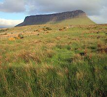 Benbulben mountain 5 by John Quinn