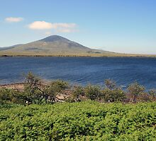 County Mayo landscape by John Quinn