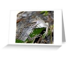Anole Combat Greeting Card