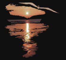 Flying seagull  by Gouzelka
