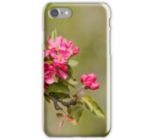 Paradise Apples Flowers iPhone Case/Skin