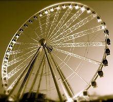 Brisbane eye by LittleRog