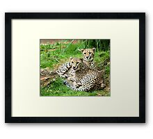 By My Side Framed Print