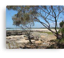 (10)-Back Beach Canvas Print