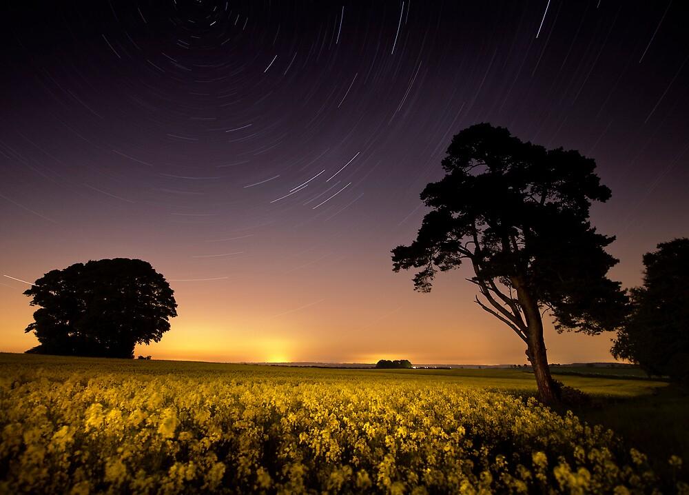 rapeseed field by moonlight by igotmeacanon