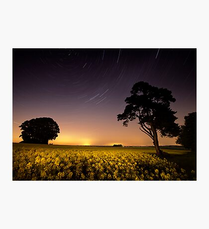 rapeseed field by moonlight Photographic Print
