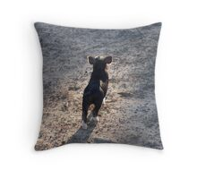 """Little Pig, Big World"" Throw Pillow"