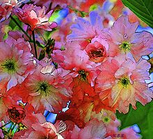pinkadelic blooms, spring blossoms, bold colors by artbykatsy
