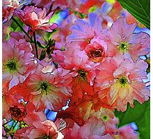 pinkadelic blooms, spring blossoms, bold colors Photographic Print