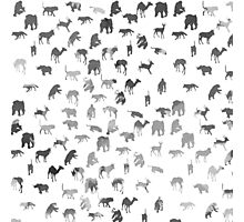 Black white pastel color watercolor animal pattern Photographic Print