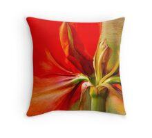 Amaryllis Splendour Throw Pillow