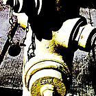 Contrasty Fire Hydrant by Bob Wall