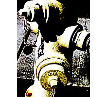 Contrasty Fire Hydrant Photographic Print