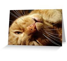 Sleepy Tigger Greeting Card