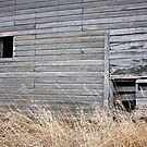 Old Barn 1 by Linda Bianic