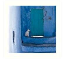 Waiting White Cat Art Print