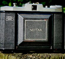 NETTAR II 518/16 # 2 (my first camera)  by Johan  Nijenhuis