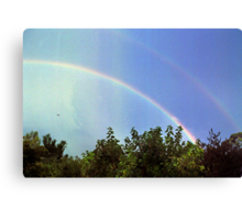 blue rainbow with little bird Canvas Print