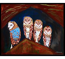 Clever Little Barn Owls Photographic Print