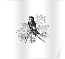 Cute vintage black and white bird flowers pattern  Poster