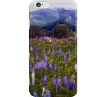 High Country Lupine Dreams iPhone Case/Skin