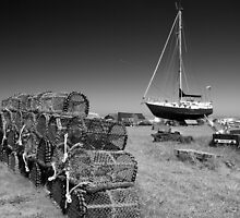 Abandoned Lobster Pots by John Nelson