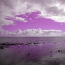 violet light by shallay