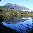 reflections of Mt Murchison (Tasmania) by gaylene