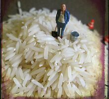 Rice by Dongedy
