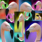 Wild And Groovy Flamingo Collage by Jenifer
