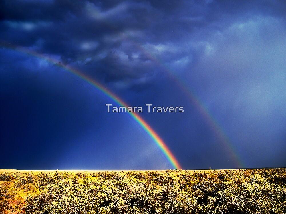 Somewhere over the rainbow... by Tamara Travers
