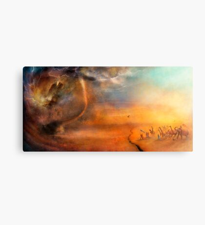 The Low Plain of Decision Metal Print