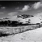 Formby Beach by Manuel Gonalves
