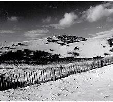 Formby Beach by Manuel Gonçalves